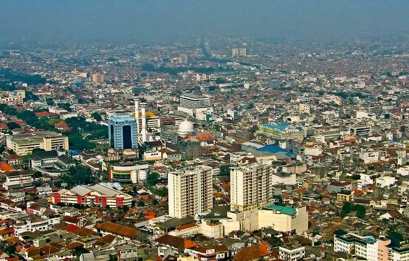 Domba Aqiqah Paket Box Bandung